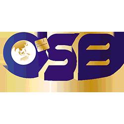 2018-DFT-partenaire-gold-OSB