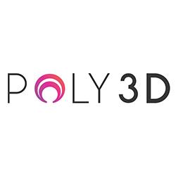 2018-DFT-partenaire-silver-poly3D