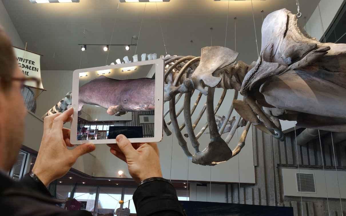 Our exhibitors at the Digital Festival Tahiti 2018: Ohrizon, museum app